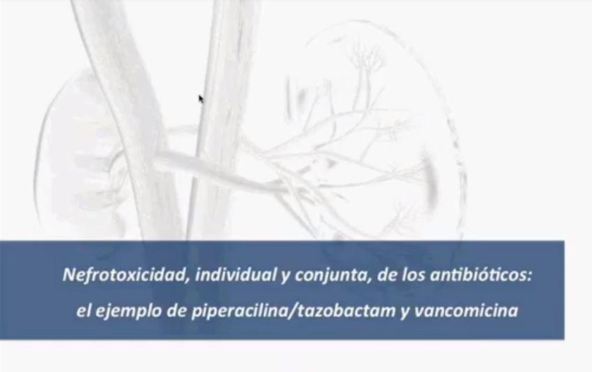 Nefrotoxicidad, individual y conjunta de los antibióticos